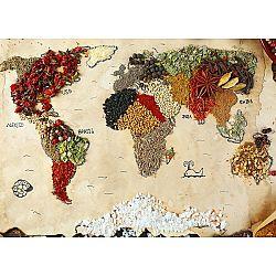 AG Art Fototapeta XXL Mapa korenia 360 x 270 cm, 4 diely